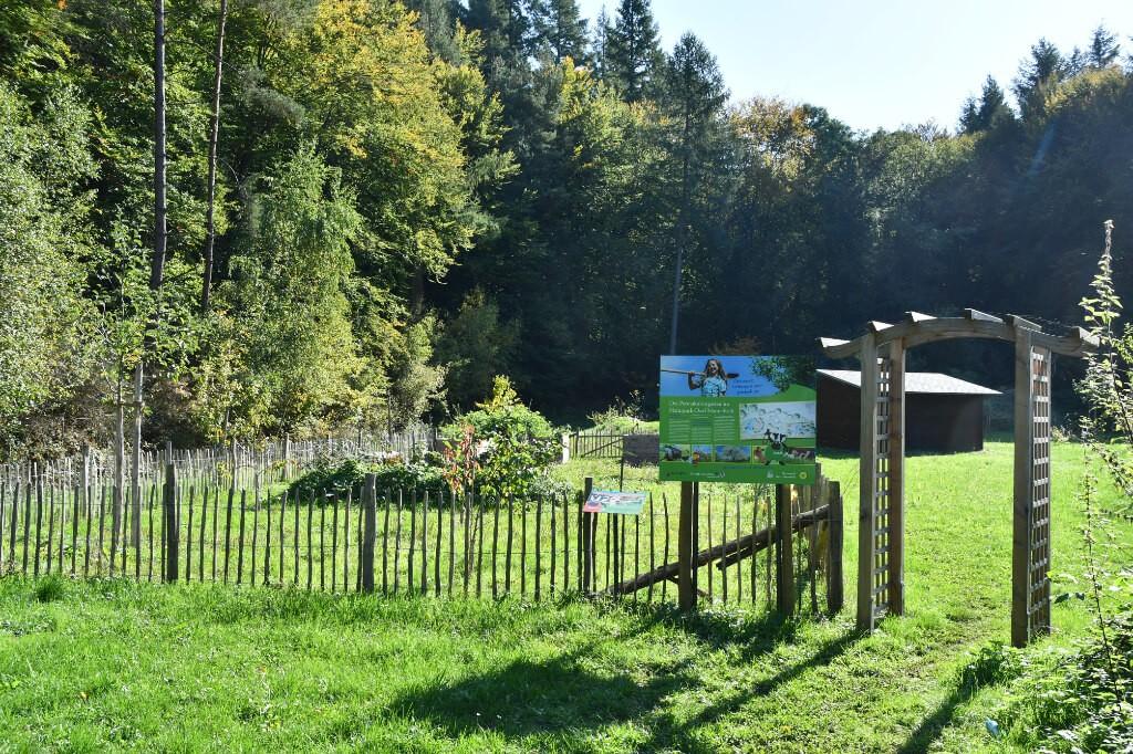 Permakultur-Garten in Mannebach